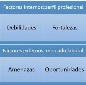 Dafo perfil profesional